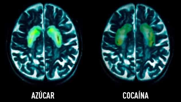 cocaina vs azucar