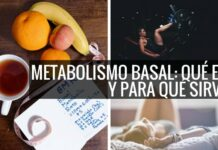 metabolismo basal