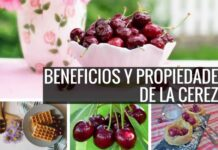 Beneficios de la cereza